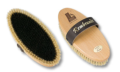 horse grooming brush Rembrandt