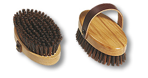 grooming brush for hounds